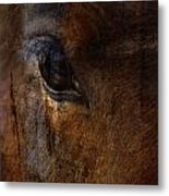 Ride With Trust Metal Print