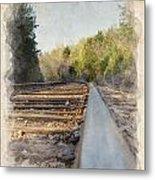 Riding The Rail II Metal Print