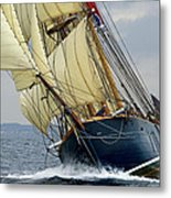 Riding The Wind Metal Print by Robert Lacy