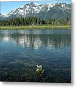 Ripples On Lake Of Mt Tallac Metal Print