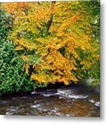 River Camcor In The Fall  Co Offaly Metal Print