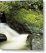 River Flowing Through A Forest, Torc Metal Print