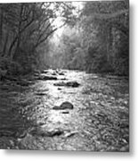 River Gaze Metal Print