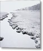 River Near Forest Metal Print