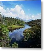 River Passing Through A Forest Metal Print