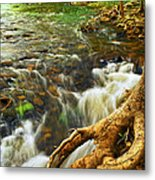 River Rapids Metal Print by Elena Elisseeva