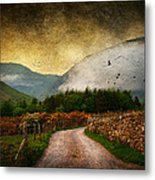 Road By The Lake Metal Print
