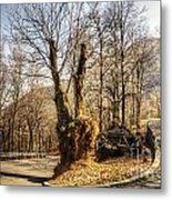 Road Curve With Trees Metal Print