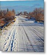 Road In Winter Metal Print by Gabriela Insuratelu