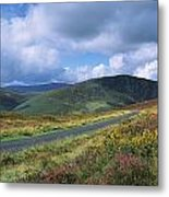 Road Through A Mountain Range, County Metal Print