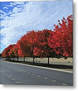 Road To Fall Colors Metal Print by Richard Leon