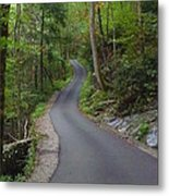 Road To The Unknown Metal Print