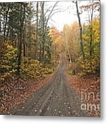 Roads Less Traveled Metal Print
