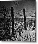 Roads Of Country  Metal Print