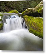 Roaring Fork Great Smoky Mountains National Park - The Simple Pleasures Metal Print by Dave Allen