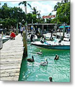Robbies Of Islamorada Metal Print