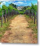 Robert Mondovi Vineyard Path Metal Print