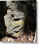 Rock Face Metal Print by Joel Deutsch