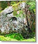 Rock Spirits Keeping Secrets Metal Print