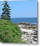 Rocks And Roses Metal Print