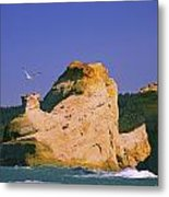 Rocky Coast Of Cape Kiwanda State Metal Print