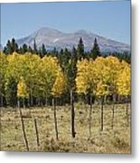 Rocky Mountain High Country Autumn Fall Foliage Scenic View Metal Print