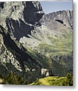 Rocky Mountains Over Grassy Landscape Metal Print
