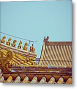 Roof Detail Metal Print