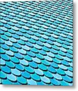 Roof Panels Metal Print