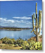 Roosevelt Lake  Metal Print