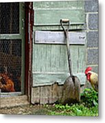 Rooster And Hens Metal Print