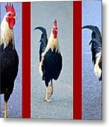 Rooster Triptych Metal Print