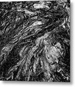 Roots Black And White Metal Print