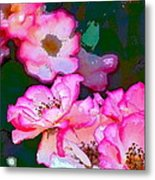 Rose 130 Metal Print by Pamela Cooper