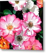 Rose 133 Metal Print by Pamela Cooper