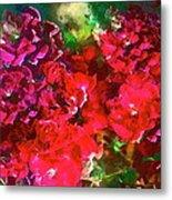 Rose 143 Metal Print by Pamela Cooper