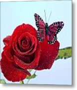 Rose Red Butterfly Isolated On Blue Metal Print by M K  Miller