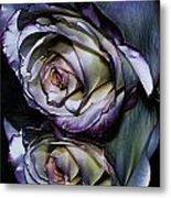 Rose Reflection 2 Metal Print
