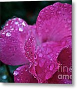 Rose Water Beads Metal Print