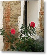 Roses And Antiquity  Metal Print