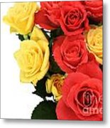 Roses Closeup Metal Print