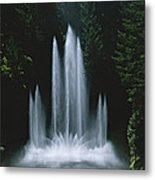 Ross Fountain Dancing In Front Of Lush Metal Print