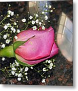 Rosy Reflections Metal Print