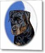 Rottweiler 1437 Metal Print