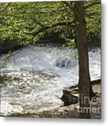 Rouge River At Fair Lane Metal Print
