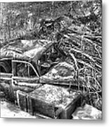 Routes In Roots  Metal Print