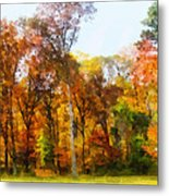 Row Of Autumn Trees Metal Print