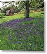 Rowallane Garden, Co Down, Ireland Wild Metal Print