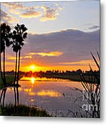 Rrice Fields At Sunset 2 Metal Print