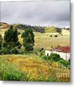 Ruin In Countryside Metal Print